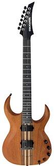 Esoterik Guitars DR1
