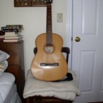 Giannini Guitar
