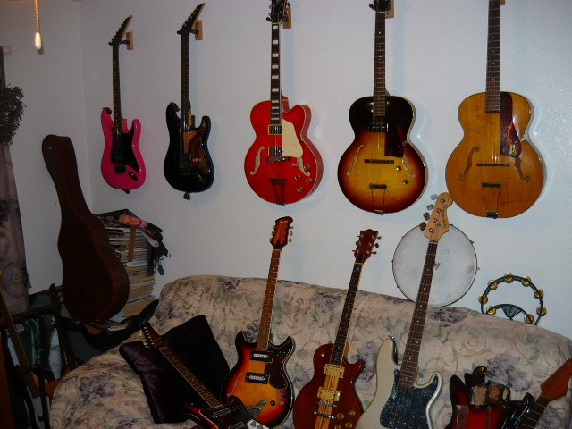 Guitar Family