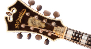 The D'Angelico Excel Mandolin