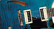 PRS-CUSTOM-HOME-MAIN-THUMB