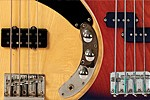 ROBIN-BASSES-HOME-MAIN-THUMB