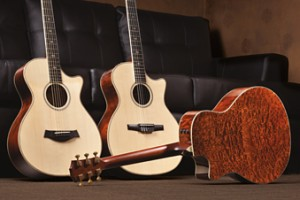Taylor Guitars offers Fall Limited Edition series.