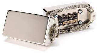 ThroBak DS-55 Pickups