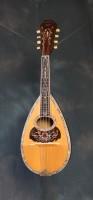 1902  C.F. Martin #7 Mandolin Brazilian Rosewood, Pearl and Ivory Bound