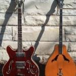 Standel and Harmony Vita