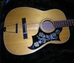 Aria 12 String