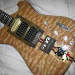 Moriarty Custom Guitars 'Wolf' #5 Clone of Jerry Garcia's Wolf guitar